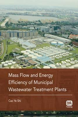 Mass Flow and Energy Efficiency of Municipal Wastewater Treatment Plants
