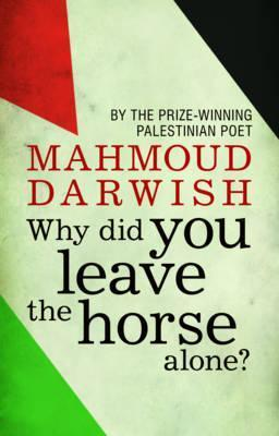Why Did you Leave the Horse Alone? Cover Image