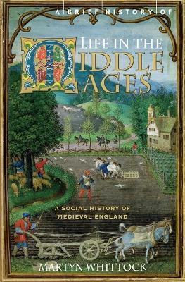 Book: A Brief History of Life in the Middle Ages