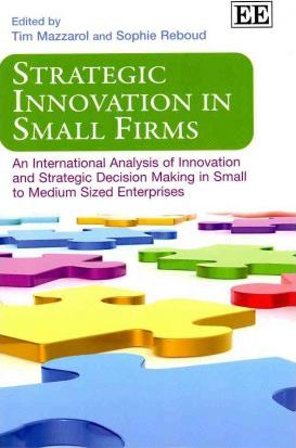 Strategic Innovation in Small Firms