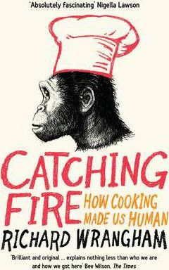 Catching Fire Cover Image
