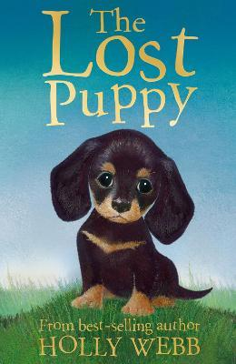 The Lost Puppy Cover Image