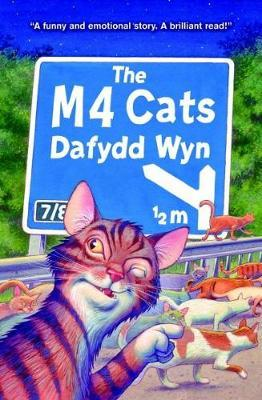 M4 Cats, The Cover Image