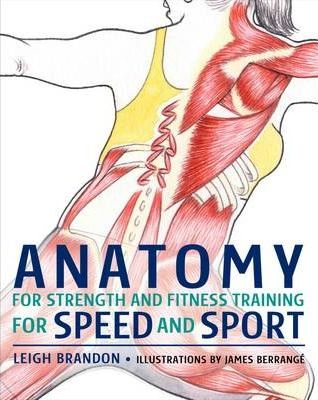 Anatomy for Strength and Fitness Training for Speed and Sport ...