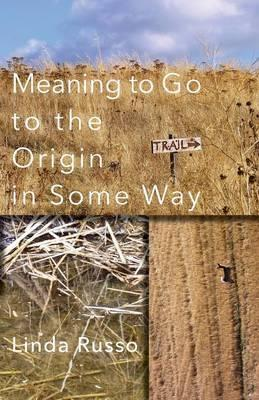 Meaning to Go to the Origin in Some Way