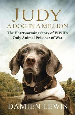 Judy: A Dog in a Million