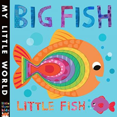 Big fish little fish jonathan litton 9781848691612 for Big fish book