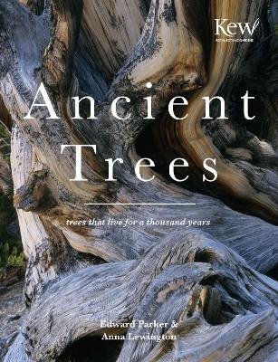 Ancient Trees Cover Image
