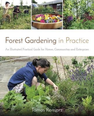 Forest Gardening in Practice : An Illustrated Practical Guide for Homes, Communities and Enterprises