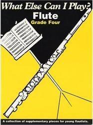 What Else Can I Play?: Flute: Grade Four