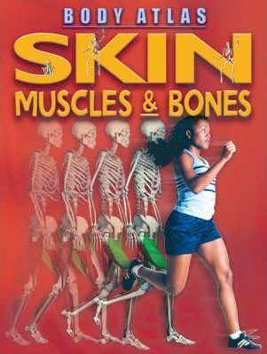 Skin, Muscles and Bones