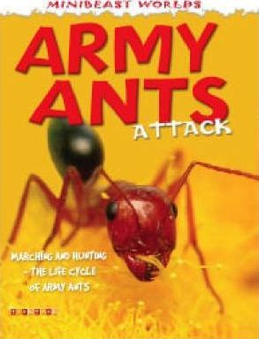Mb Army Ants Attack Mini Beasts