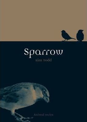 Sparrow Cover Image