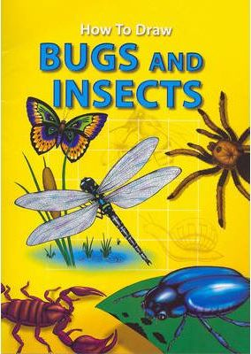 How to Draw Bugs and Insects