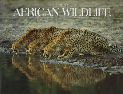 Best of African Wildlife