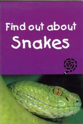 Find out about Snakes