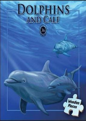 Dolphins & Calf