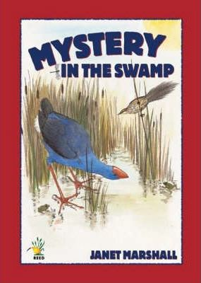 Mystery in the Swamp