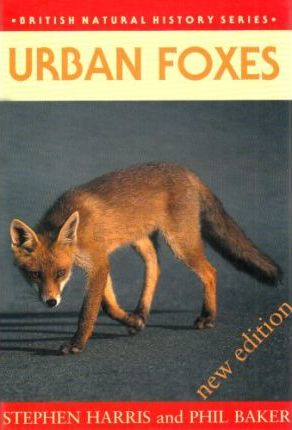 Urban Foxes