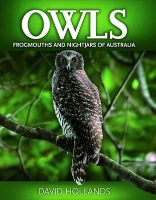 Owls,Frogmouths and Nightjars of Australia