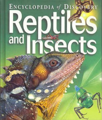 Reptiles and Insects