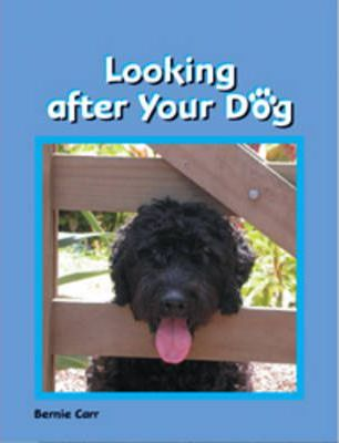 Looking After Your Dog
