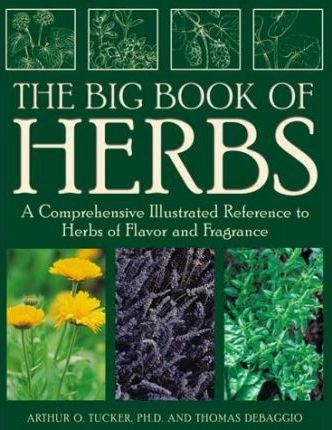 The Big Book of Herbs