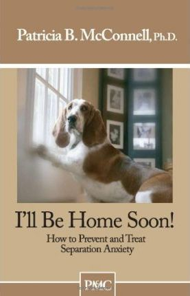 I'll Be Home Soon - Patricia B McConnell