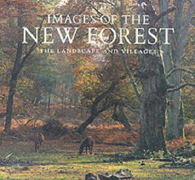 Images of The New Forest