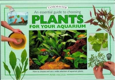 An Essential Guide to Choosing Plants for Your Aquarium