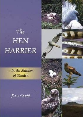The The Hen Harrier: In the Shadow of Slemish