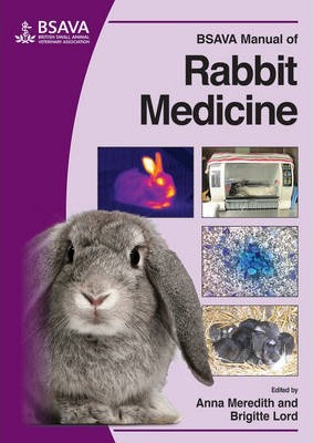 BSAVA Manual of Rabbit Medicine - Anna Meredith, Brigitte Lord