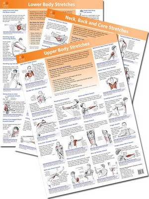 The Anatomy of Stretching Posters : Brad Walker : 9781905367412