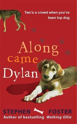 Along Came Dylan