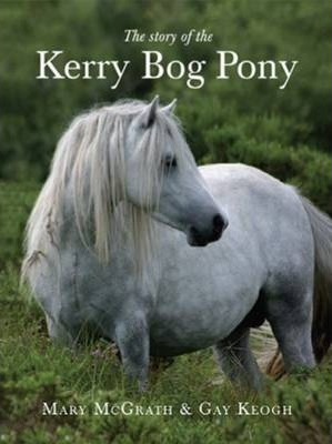 Story of the Kerry Bog Pony