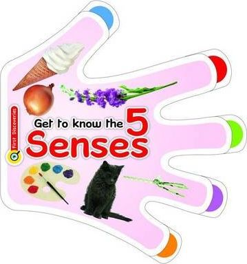 Get to Know the Five Senses