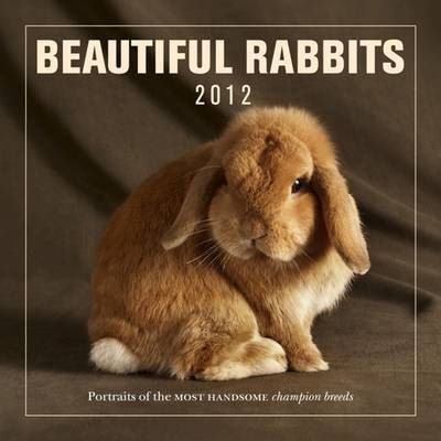 Beautiful Rabbits Calendar - 2012