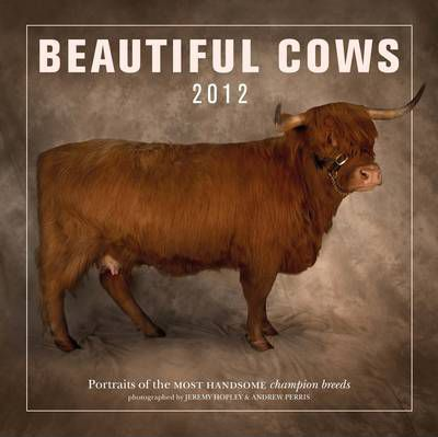 Beautiful Cows Calendar 2012