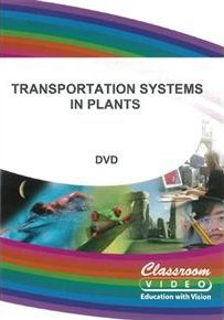 Transportation Systems in Plants