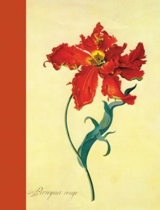 Journal : Parrot Tulip