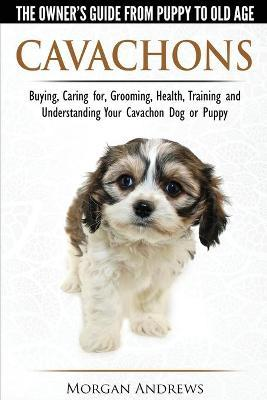 Cavachons - The Owner's Guide from Puppy to Old Age - Choosing, Caring For, Grooming, Health, Training and Understanding Your Cavachon Dog or Puppy