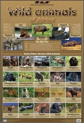 Wild Animals of Africa: Wall chart