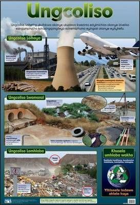 Pollution: Wall chart