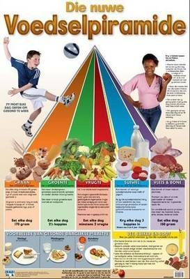 Food pyramid: Wall chart