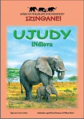 Judy the elephant: Reader