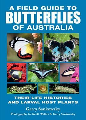 Field Guide to Butterflies of Australia