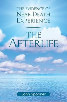 Afterlife  The Evidence of Near Death Experience