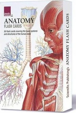 Anatomy Flash Cards - Scientific Publishing