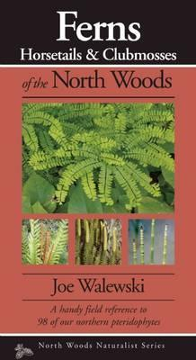Ferns & Allies of the North Woods: A Handy Field Reference to All 86 of Our Ferns and Allies