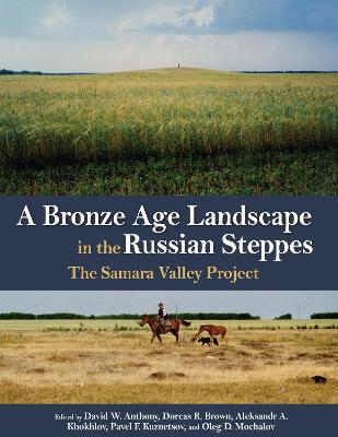 A Bronze Age Landscape in the Russian Steppes